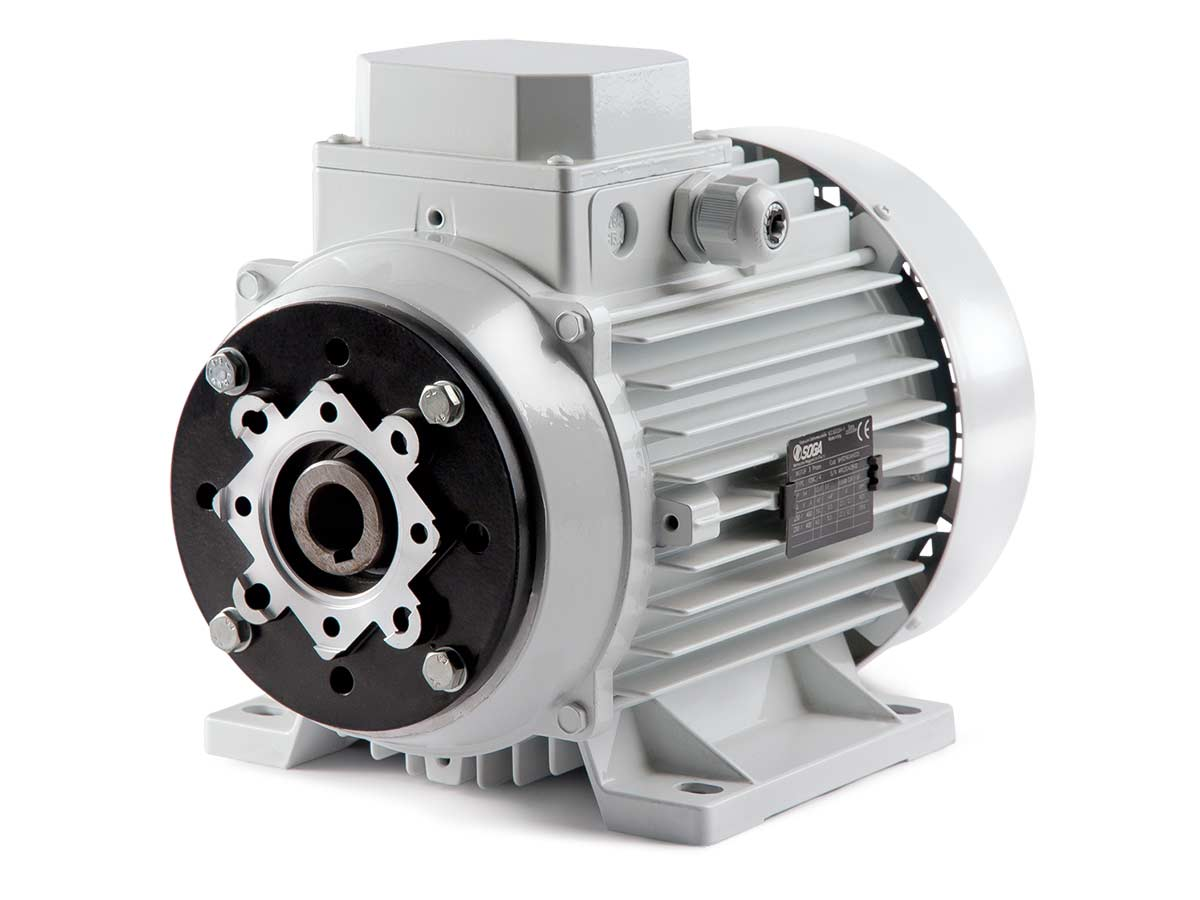 hollow shaft motors