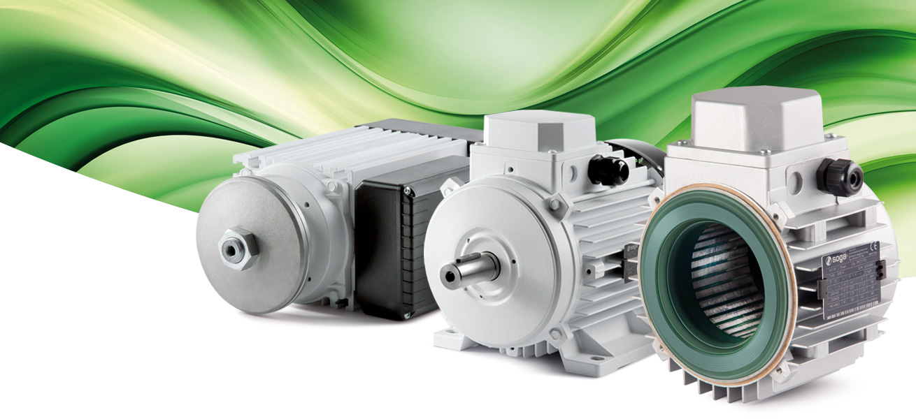 electric motors standard and special version