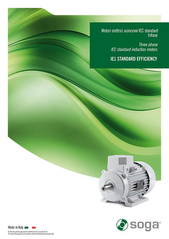 motori elettrici IE1 trifase