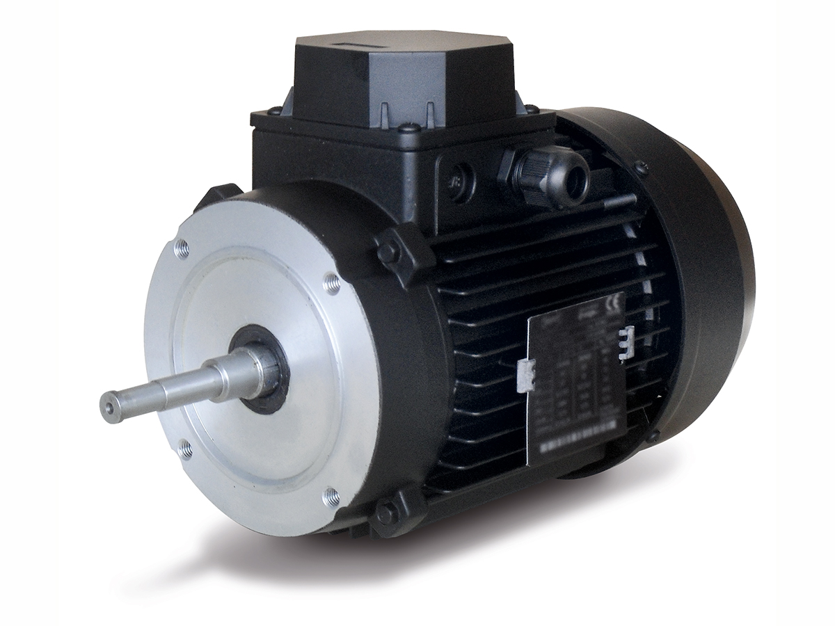 electric motor with special shaft